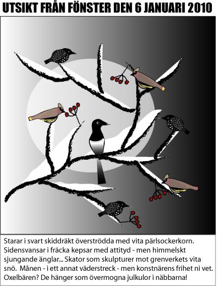 Vinterfåglar.jpg